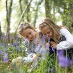 Little Acorns Photography in Haywards Heath